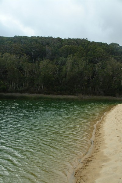 Lake Wabby, emerald green in colour is unique to Fraser Island.